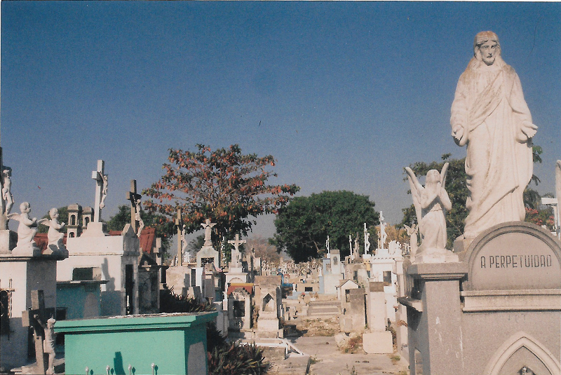 cemeterey11