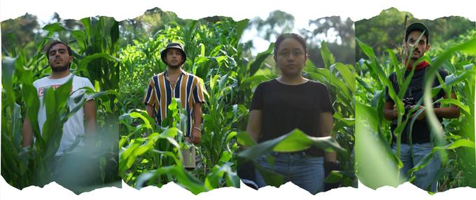 Emiliano (Productor), Diego (Director), Luz (Guionista), Iñaki (Dir. Fotografía)